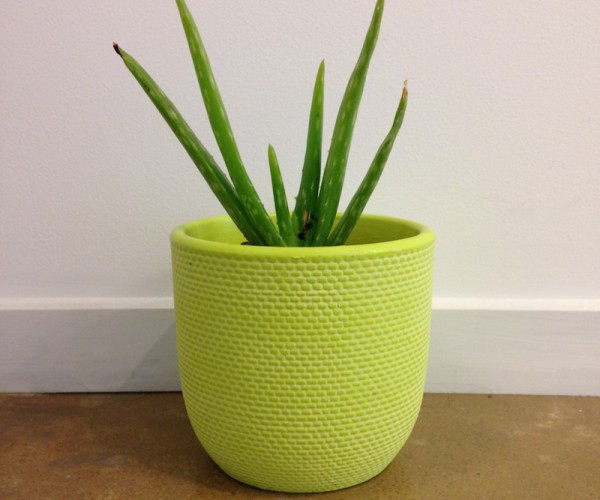 Green Textured Pot