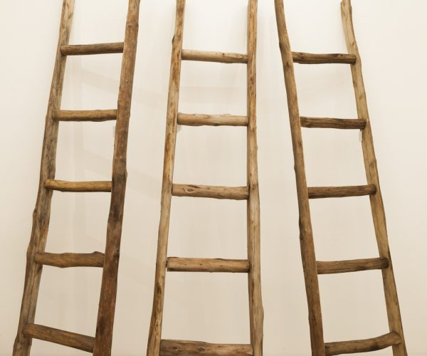 Decorative ladders made from natural timber with a rustic finish. Decorate the rungs or make it a piece by itself!
